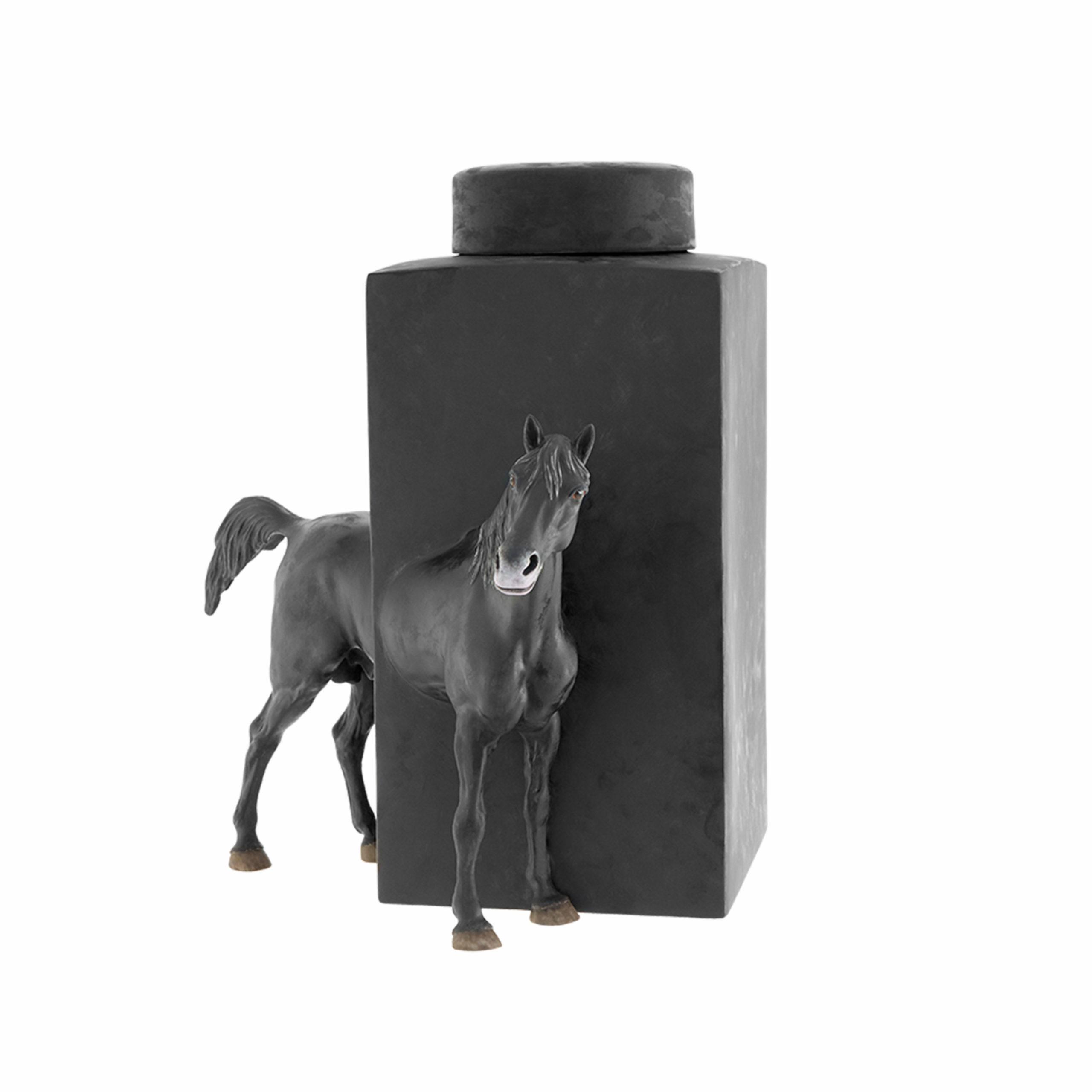 Equus 7 - Photo 1
