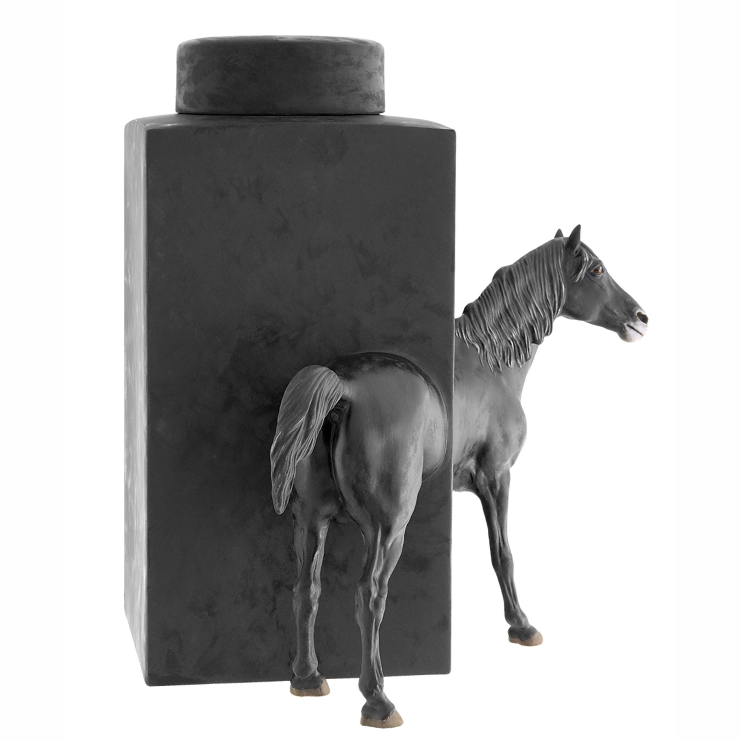 Equus 7 - Photo 2