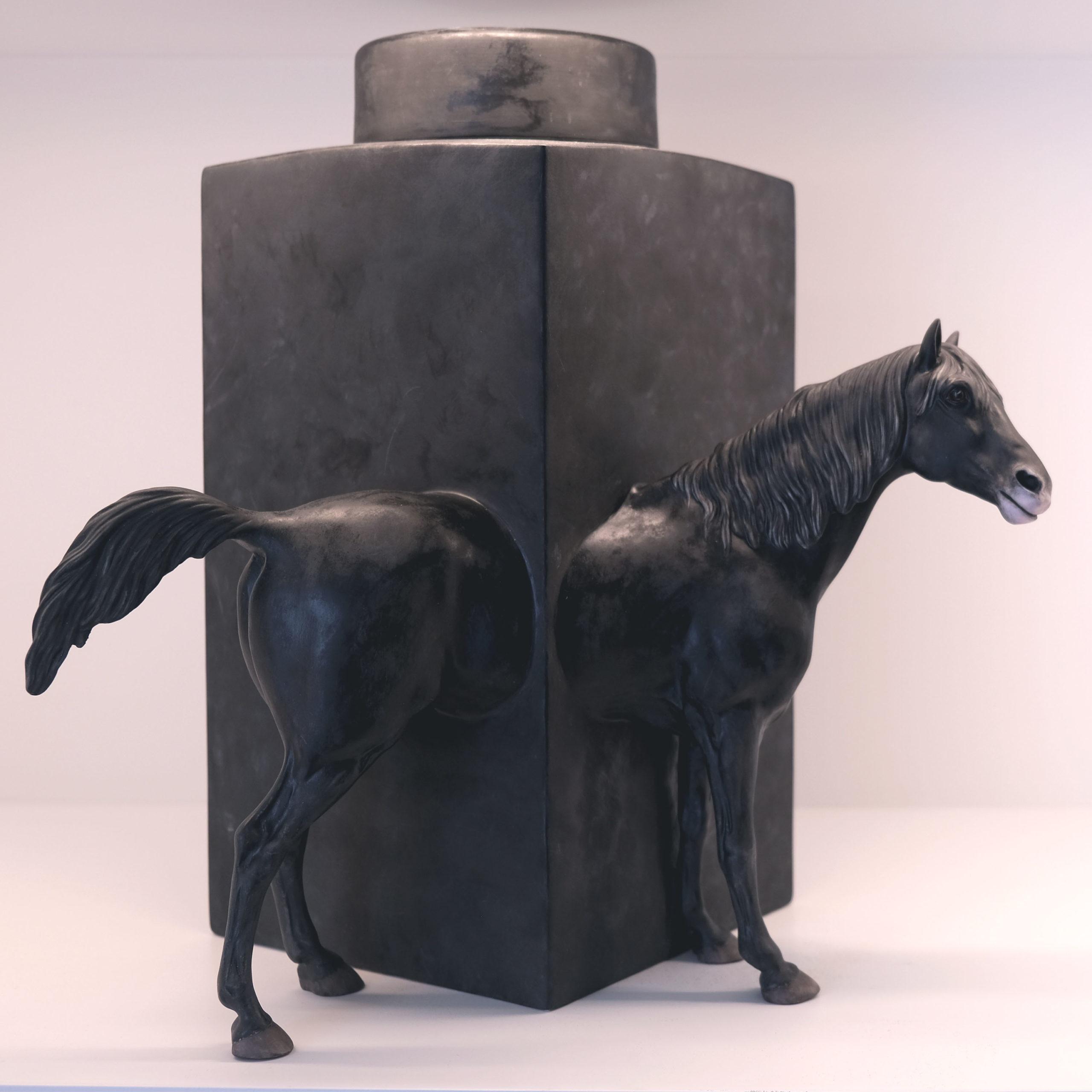 Equus 7 - Photo 4