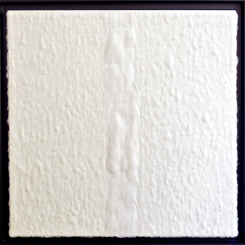 White Surface - Photo 1