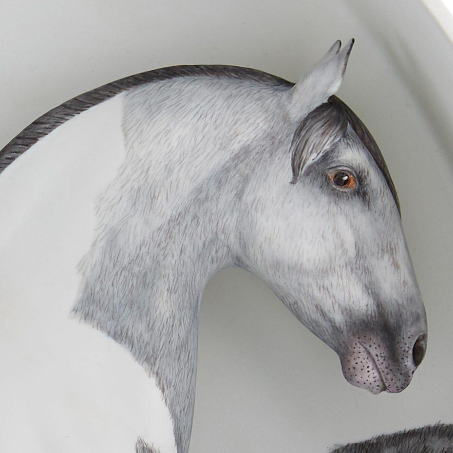 Equus 1 - 4